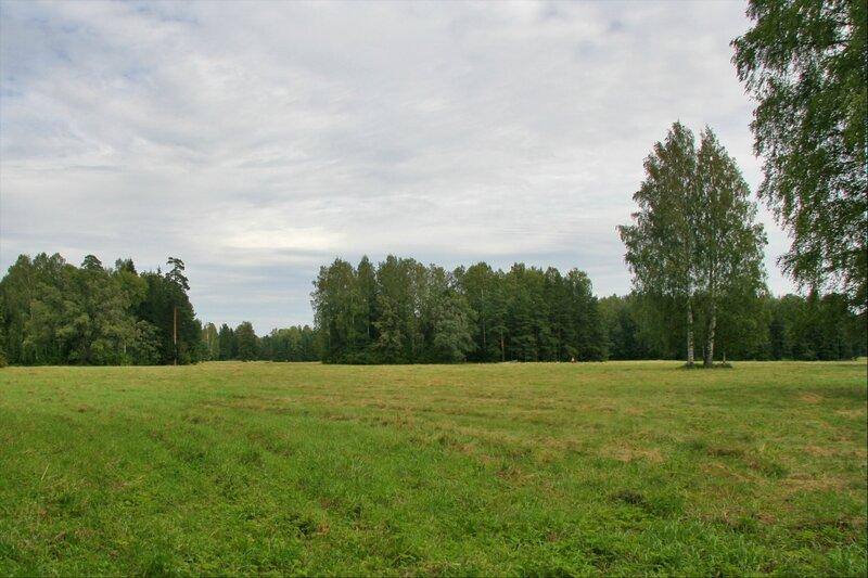 Павловский парк, Район Белая береза
