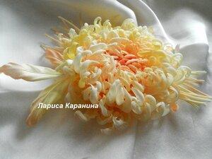 Солнечная Хризантема