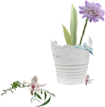 priss_spring_cluster04.png