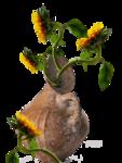 цветы (37).png