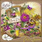 dydyge_album_colorful summer