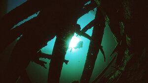 У берегов Флориды обнаружили клад стоимостью в $4,5 млн