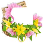 DBB_gardenflowers_cluster01.png