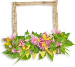 DBB_gardenflowers_cluster04.png