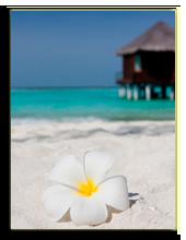 Мальдивы. hfng - shutterstock