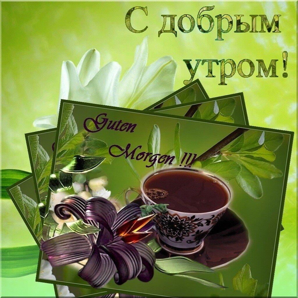 Доброе утро и отличного дня открытки