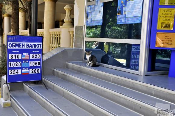 Валютный кот