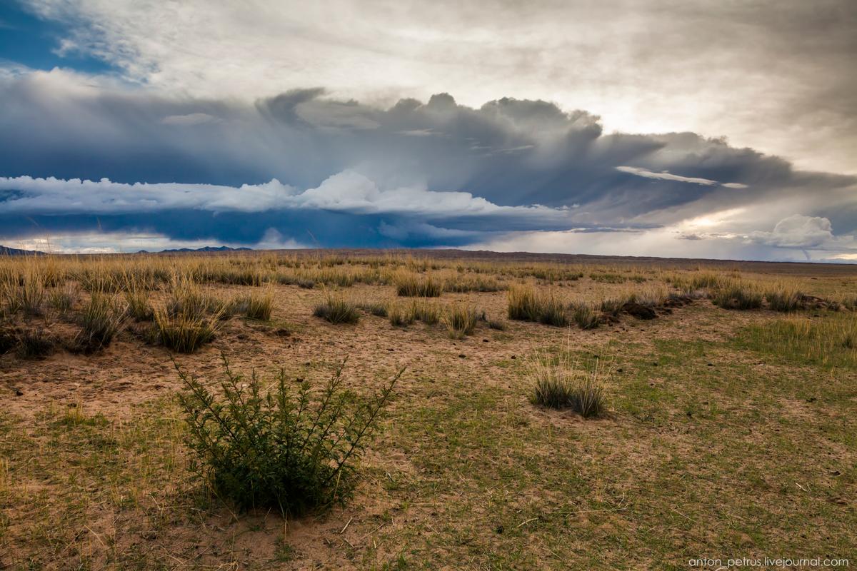 Монголия. Озеро Хар-Ус-Нуур
