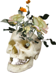 NLD Skull with flowers.png