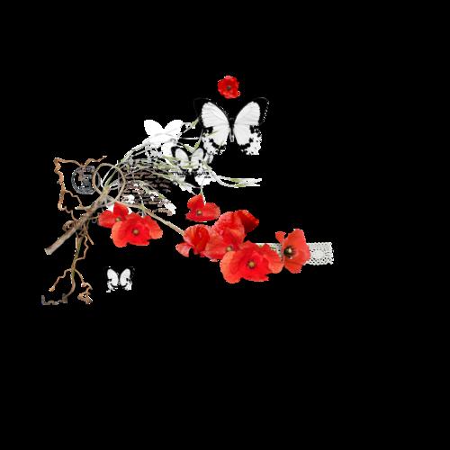 «In My Garden» 0_95c9a_2cc20367_L