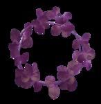 MyPassion_ViolettDesign_el (42).png