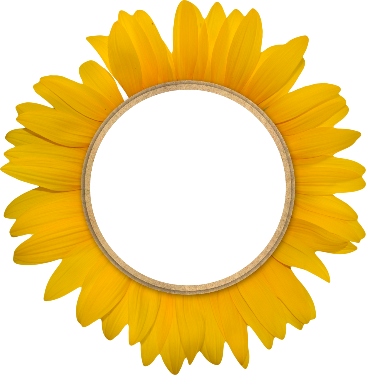 round frames polyvore - Sunflower Picture Frames