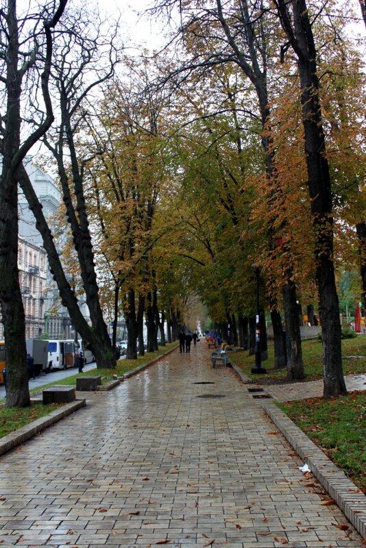 Аллея парка Шевченко