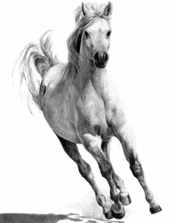 Бегущий конь.