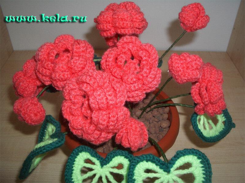 Бегония в горшочке вязаные цветы крючком.