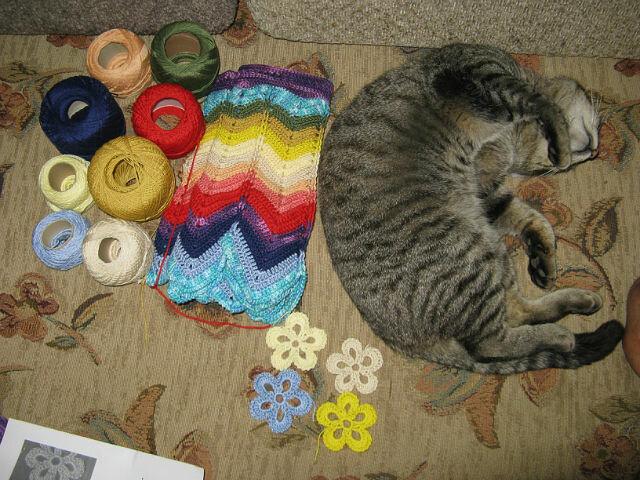 Где хочу - там и сплю!(2)