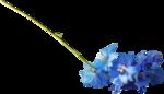 ldavi-shadowedflowers-delphinium19.png