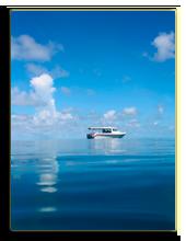 Мальдивы. Shkanov Alexey - shutterstock