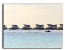 Мальдивы. Viceroy Maldives 5*. Watersports