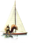 ldavi-scenesfms-sailboatwithreflection-1cc.png