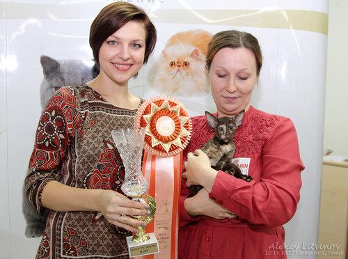 http://img-fotki.yandex.ru/get/6421/135140311.42/0_94650_7b563b53_L.jpg