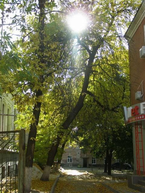 Кропивницький (Кіровоград)