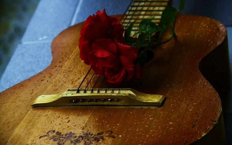 Гитара и цветы картинки 1