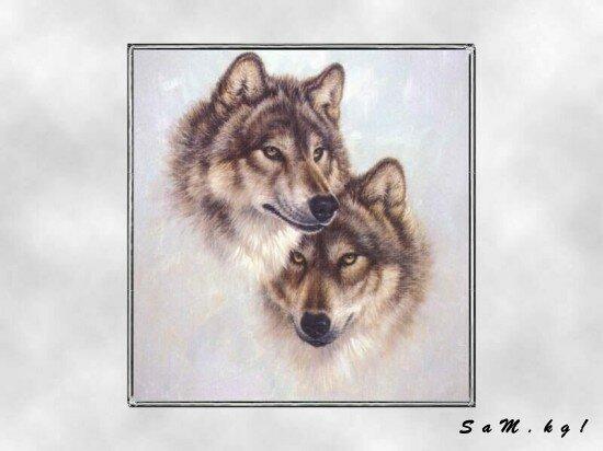 "Схема вышивки  ""Волки "": таблица цветов."