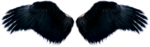 dus-intothedarkness-wings1.png