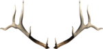 dus-intothedarkness-antlers1.png