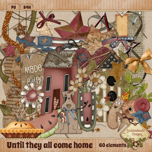 «Until They All Come Home» 0_9663d_3d01ea8b_L