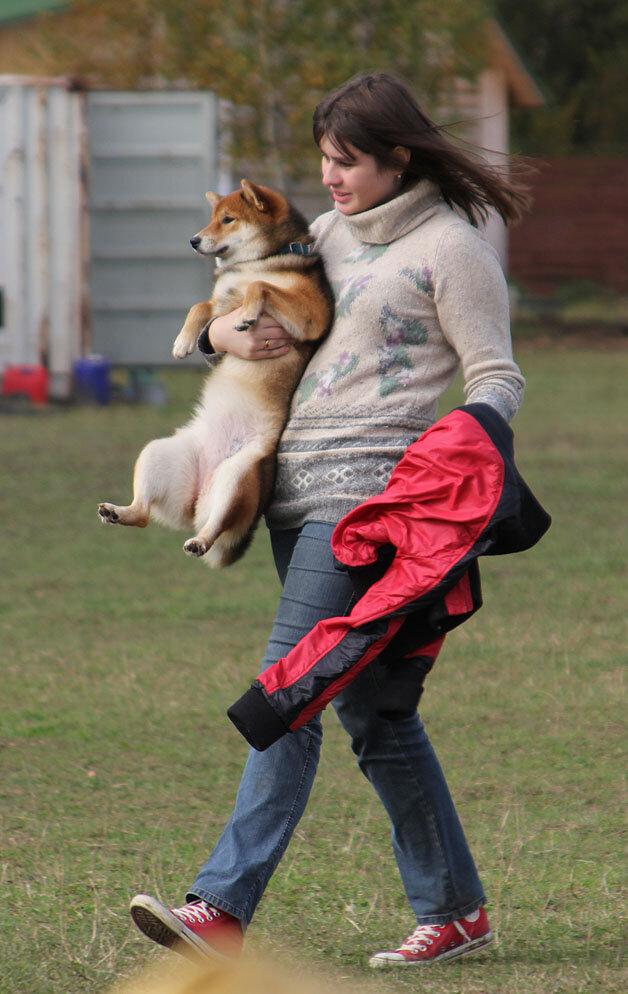Недельные курсы повышения квалификации для собакообожак :-) Приглашаем всех!!! - Страница 3 0_7dbb1_c87ff199_XXL