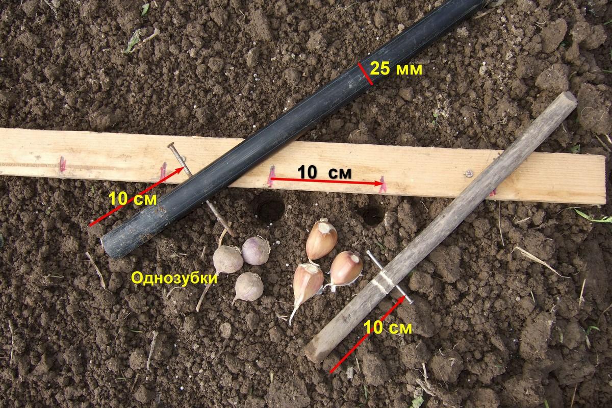 Инструмент для посадки лука 155