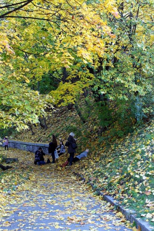 Опавшие листья на парковой дорожке