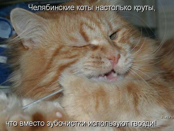 http://img-fotki.yandex.ru/get/6421/59709858.1d/0_ef6e1_82705bd5_XL.jpg