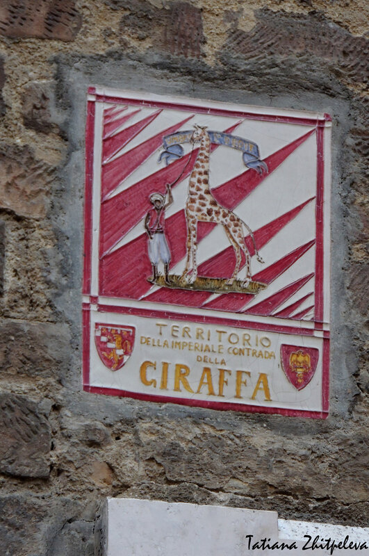 контрада Жираф