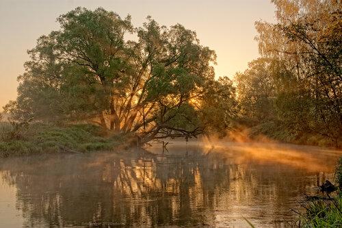 Лучи утреннего солнца