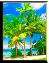 Мальдивы. Vibrant Image Studio - shutterstock