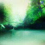 ldavi-scenesfms-summer-5d.jpg