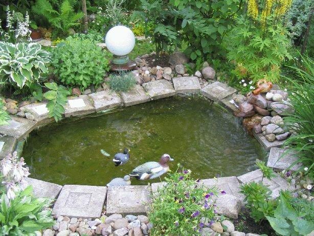 Часто проблемой садовых прудов, построенных своими руками, является небольшая их глубина.