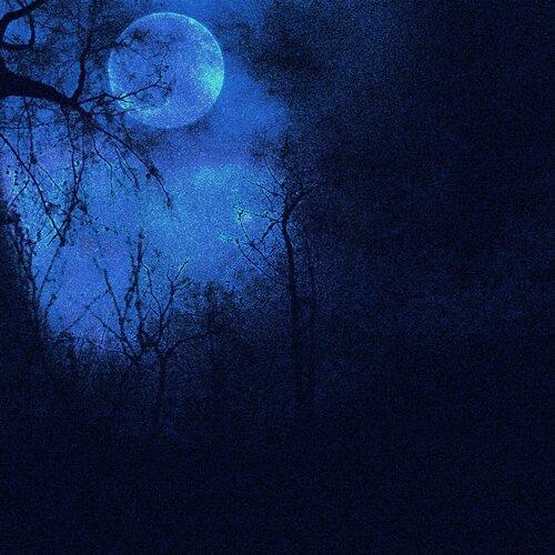 «In Gentle Moonlight» 0_95910_64641fb8_L