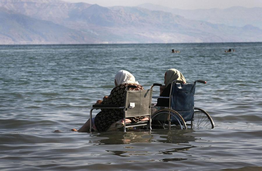Горный козёл на берегу Мёртвого моря, 17 марта 2009 года. С