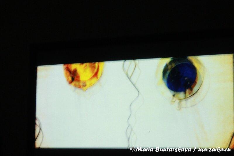 Ассонансы Сергея Терентьева, Радищевский музей, 12 октября 2012 года