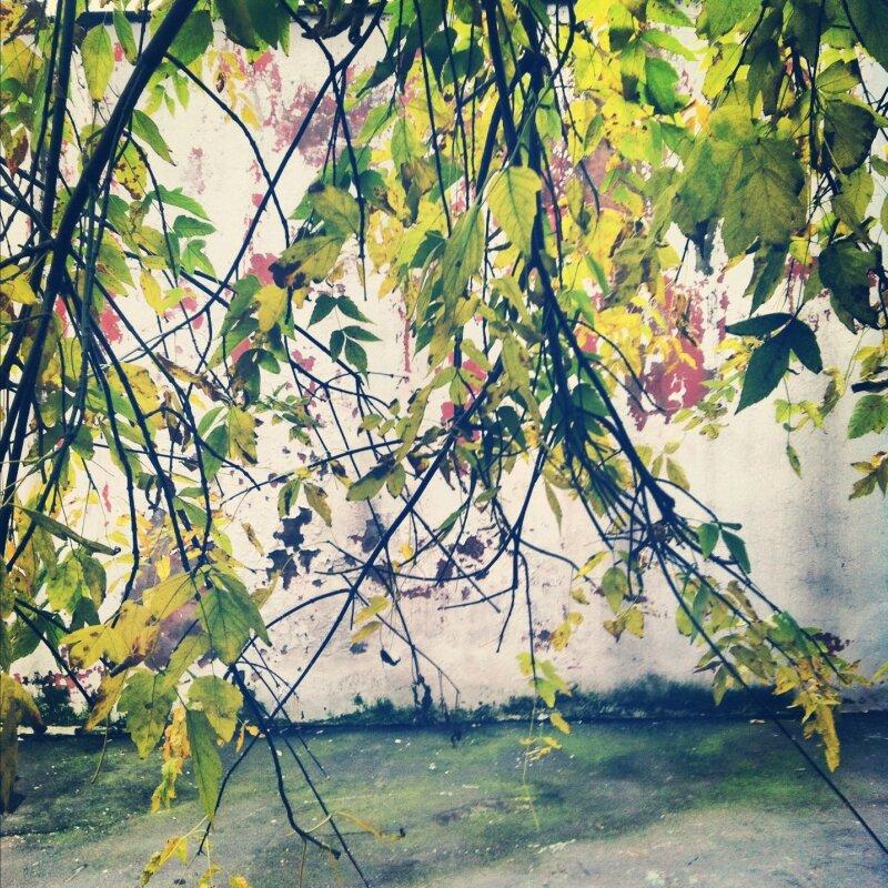Стена во дворе Винзавода