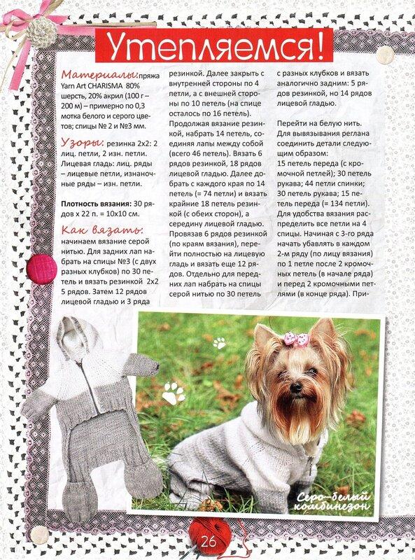 Вязание для собак спицами для йорка