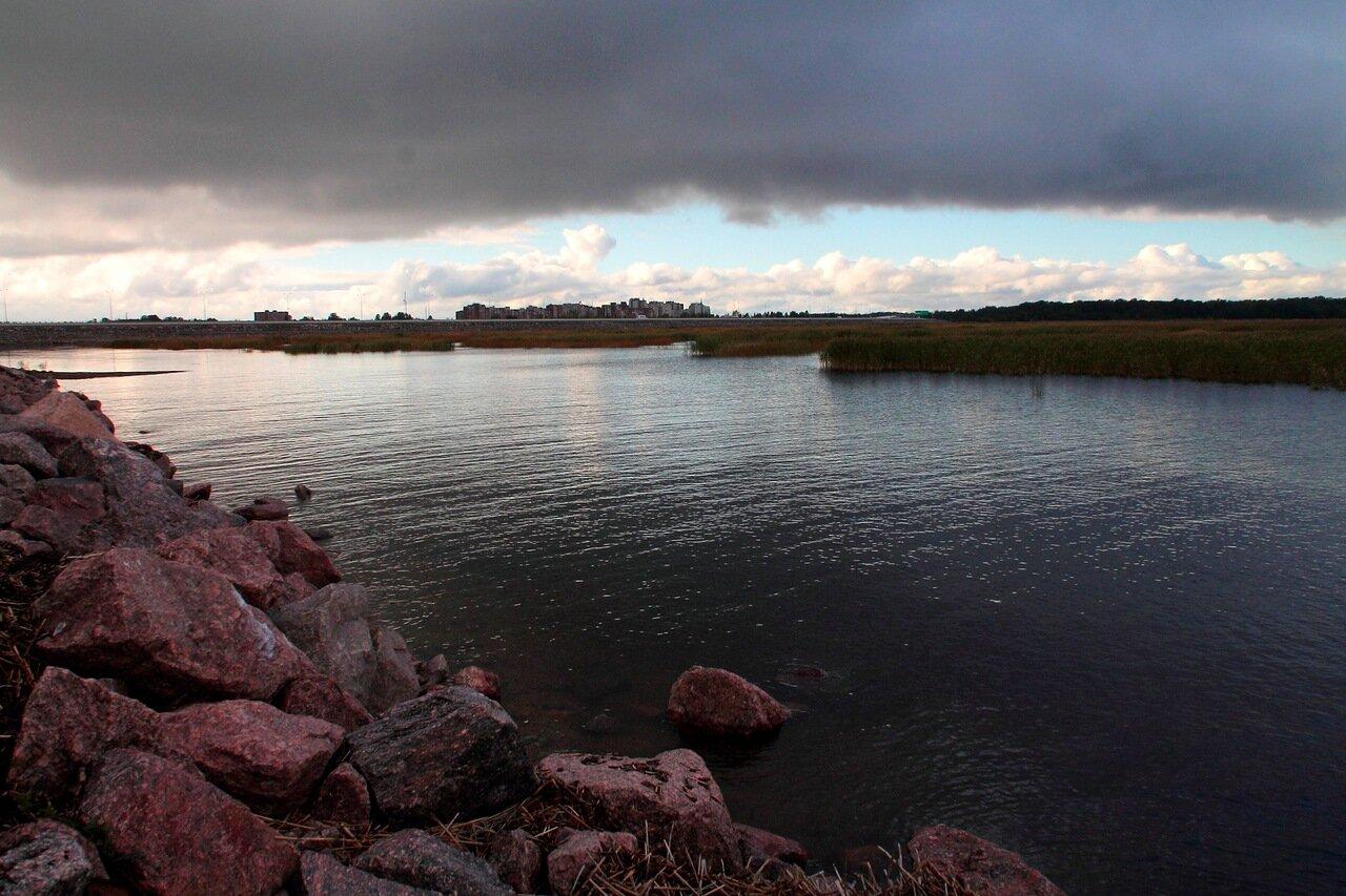 залив фото кронштадт