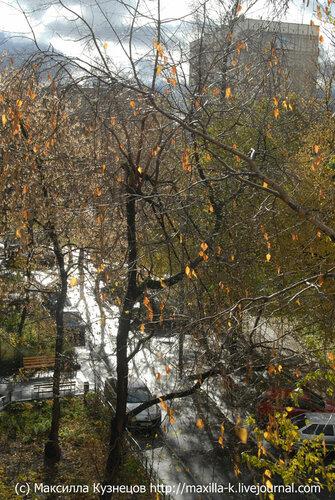 Осенний крест