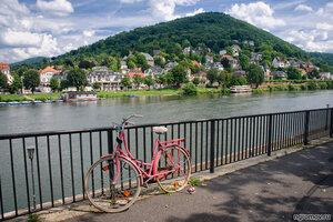 Розовый велосипед (велосипед, Гейдельбеог, набережная, Неккар)