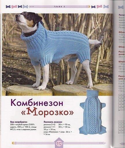 Теги: шить для собакшить