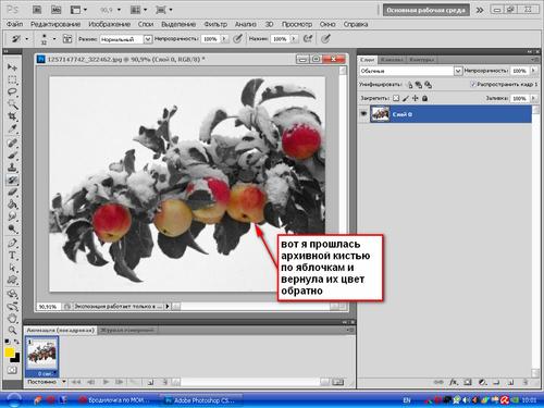 Урок от NATALI: Делаем чёрно-белое фото с цветными элементами